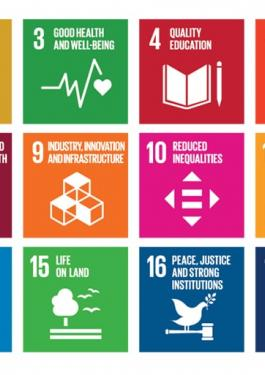 picture of UNs 17 sustainability development goals